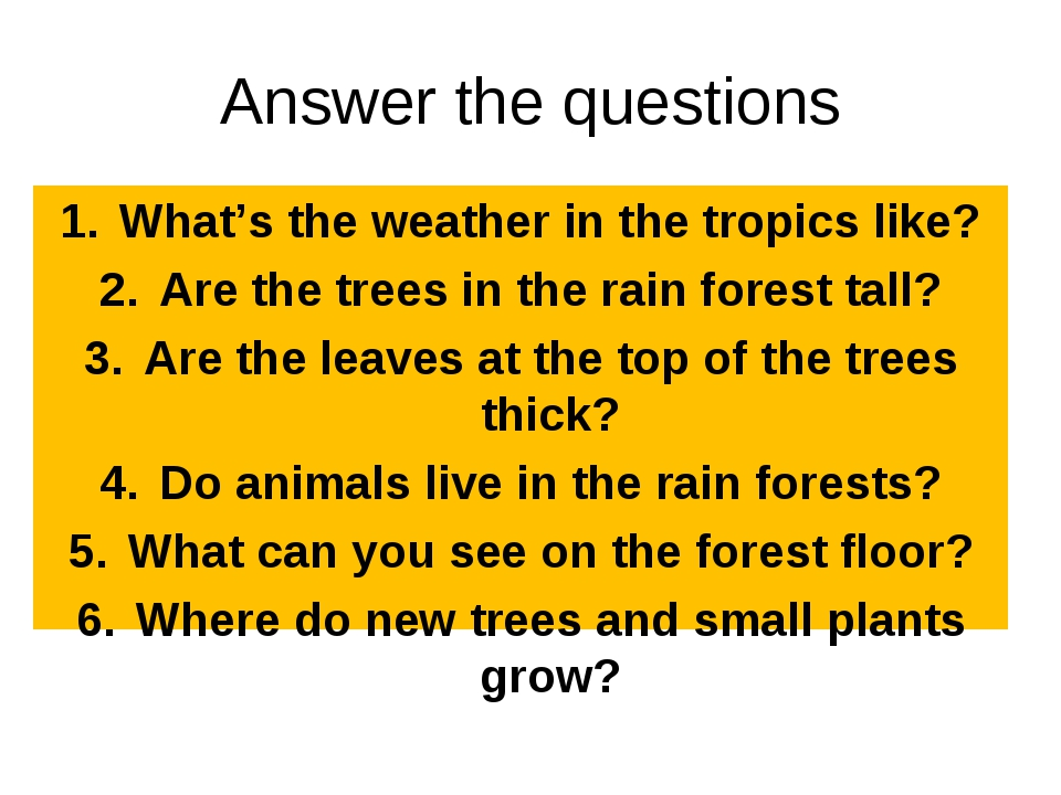 Answer the questions What's the weather in the tropics like? Are the trees in...