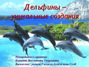 Дельфины – уникальные создания Руководитель проекта: Китаева Валентина Георг