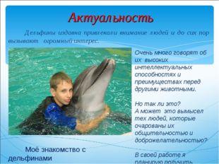 Актуальность Дельфины издавна привлекали внимание людей и до сих пор вызывают