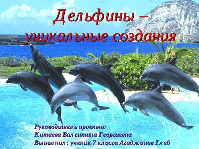 Дельфины – уникальные создания Руководитель проекта: Китаева Валентина Георг...