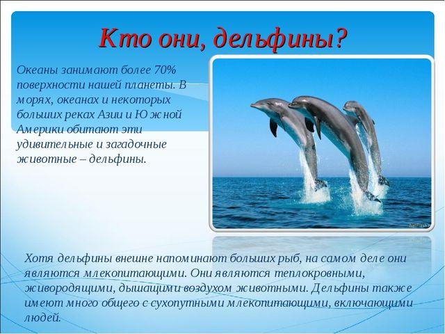 Кто они, дельфины? Океаны занимают более 70% поверхности нашей планеты. В мор...
