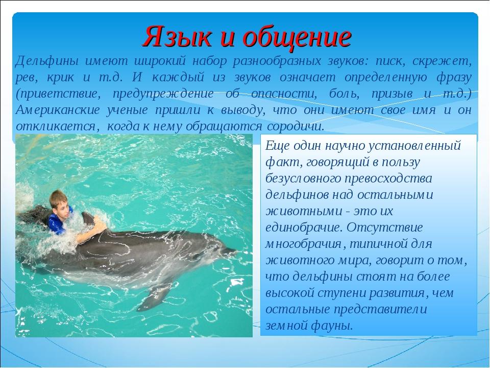 Язык и общение Дельфины имеют широкий набор разнообразных звуков: писк, скреж...