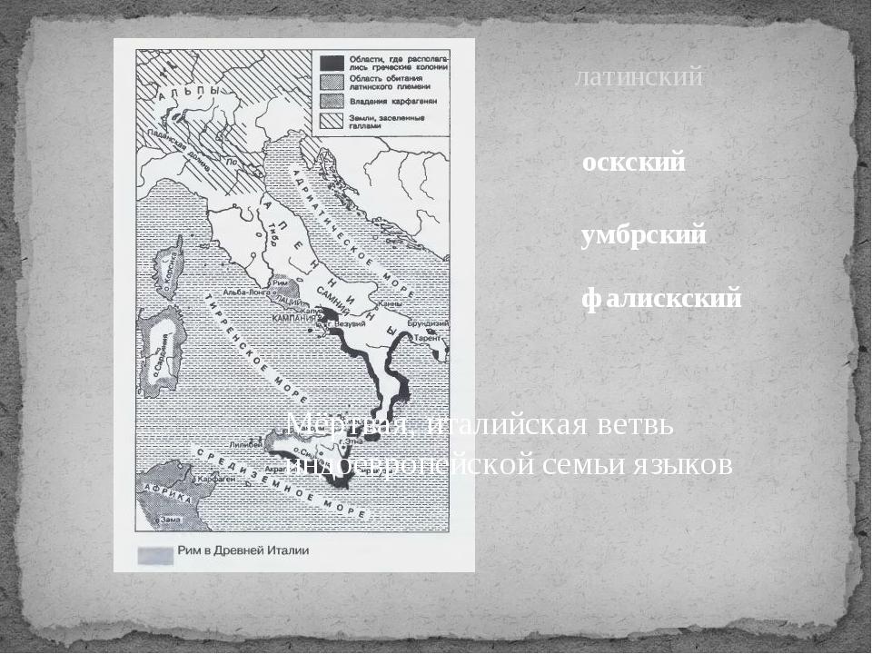 Мёртвая, италийская ветвь индоевропейской семьи языков латинский оскский умбр...