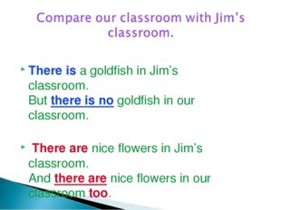 There is a goldfish in Jim's classroom. But there is no goldfish in our class