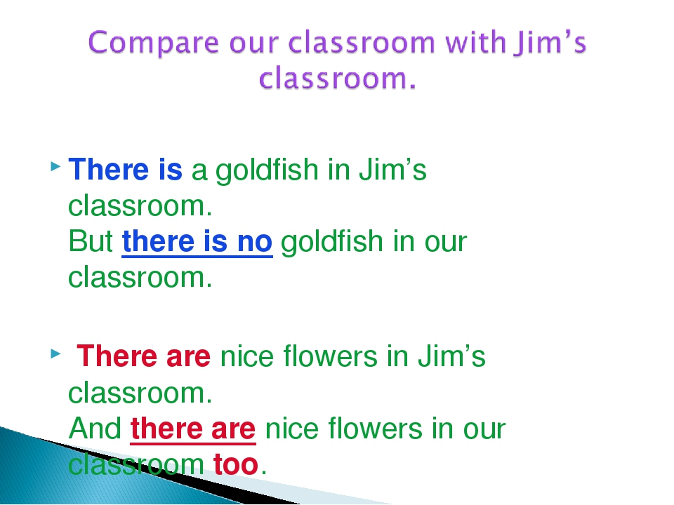 There is a goldfish in Jim's classroom. But there is no goldfish in our class...