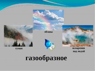 газообразное туман облака испарения над водой