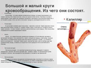 Капилляры Капилляры - это мельчайшие кровеносные сосуды, которые пронизывают