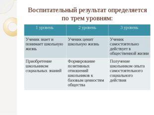 Воспитательный результат определяется по трем уровням: 1 уровень 2 уровень 3