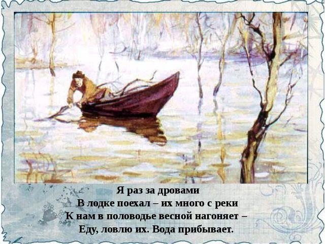 Я раз за дровами В лодке поехал – их много с реки К нам в половодье весной на...