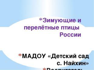 МАДОУ «Детский сад с. Найхин» Воспитатель – инструктор по ФК Зенкова Алёна Ви