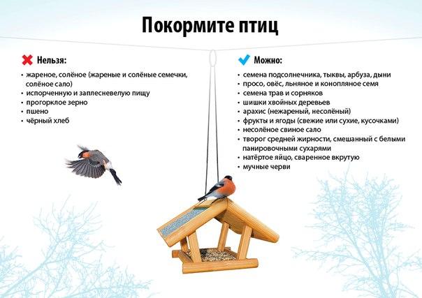 hello_html_m61291df2.jpg