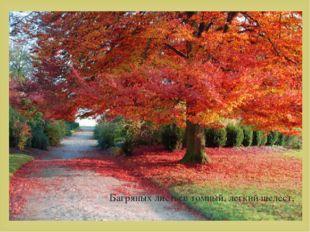 Багряных листьев томный, легкий шелест, 