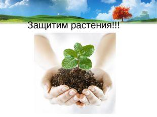 Защитим растения!!!