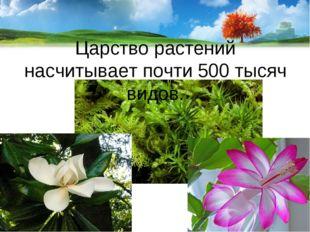 Царство растений насчитывает почти 500 тысяч видов.