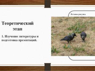 Теоретический этап 1. Изучение литературы и подготовка презентаций.