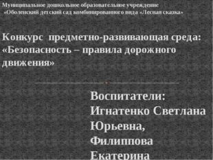 Воспитатели: Игнатенко Светлана Юрьевна, Филиппова Екатерина Серафимовна 2015