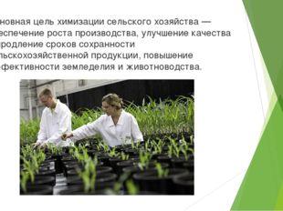 Основная цель химизации сельского хозяйства — обеспечение роста производства,