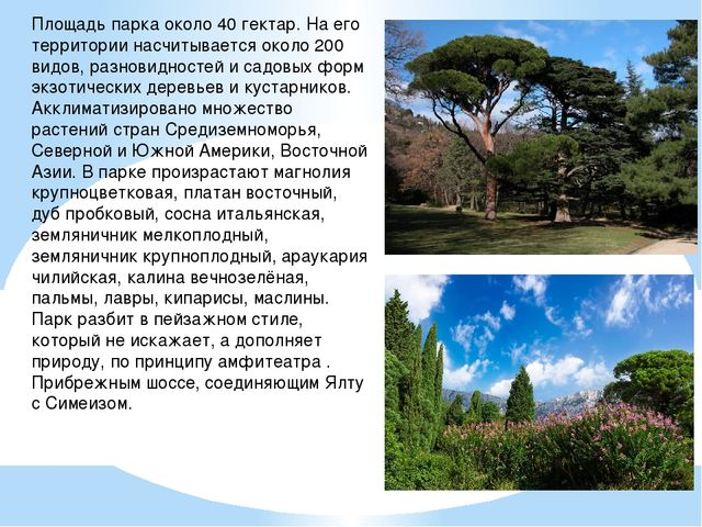 Площадь парка около 40 гектар. На его территории насчитывается около 200 видо...