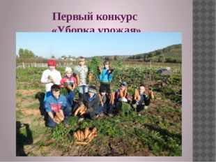 Первый конкурс «Уборка урожая»