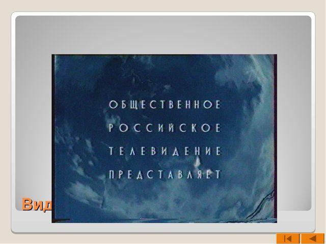 Видео фрагмент
