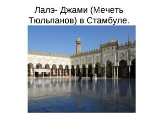 Лалэ- Джами (Мечеть Тюльпанов) в Стамбуле.