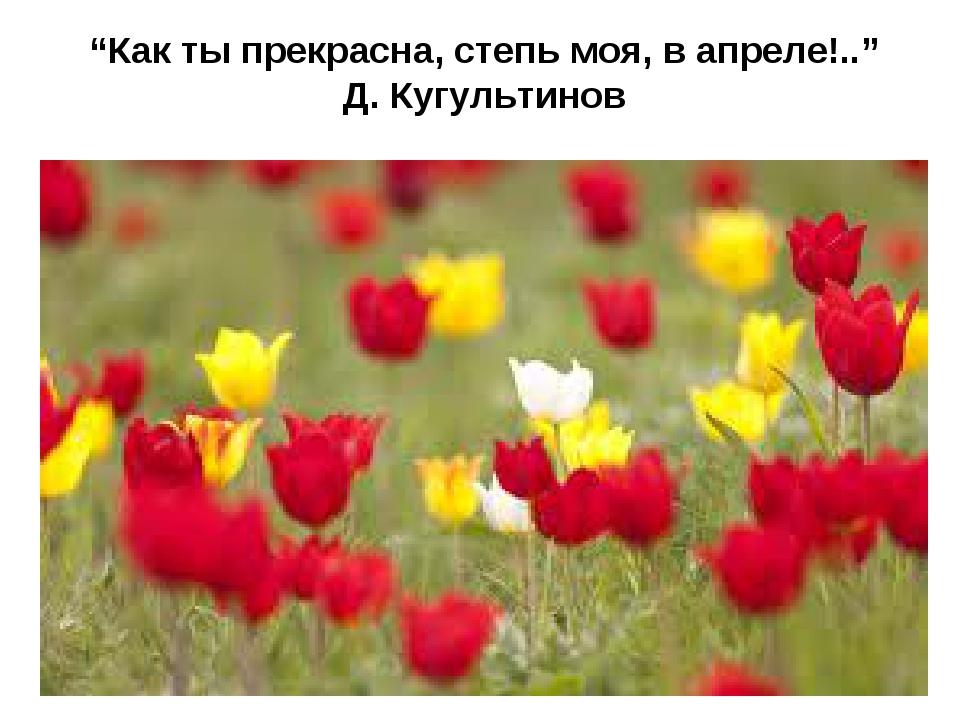 """""""Как ты прекрасна, степь моя, в апреле!.."""" Д. Кугультинов"""