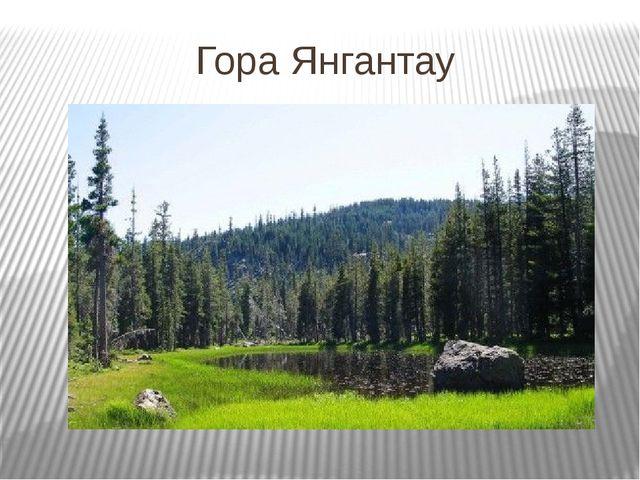 Гора Янгантау