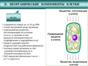 II. НЕОРГАНИЧЕСКИЕ КОМПОНЕНТЫ КЛЕТКИ ВОДА МИН. СОЛИ содержится в живых кл. от