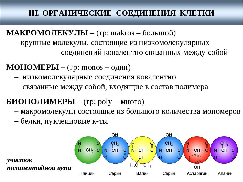 МАКРОМОЛЕКУЛЫ – (гр: makros – большой) – крупные молекулы, состоящие из низк...