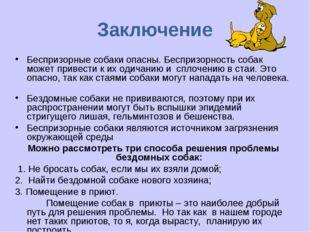 Заключение Беспризорные собаки опасны. Беспризорность собак может привести к