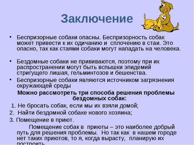 Заключение Беспризорные собаки опасны. Беспризорность собак может привести к...
