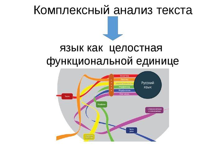 Комплексный анализ текста язык как целостная функциональной единице