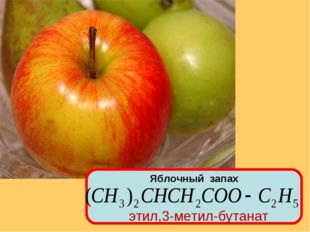 Яблочный запах этил,3-метил-бутанат
