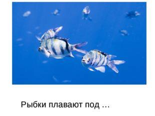 Рыбки плавают под …
