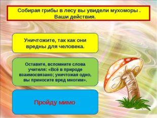 Собирая грибы в лесу вы увидели мухоморы . Ваши действия. Уничтожите, так ка