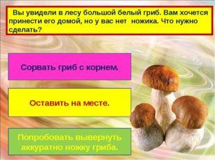 Вы увидели в лесу большой белый гриб. Вам хочется принести его домой, но у в