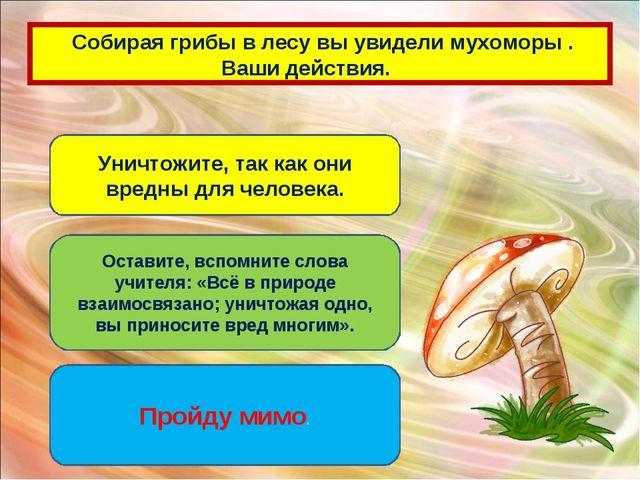 Собирая грибы в лесу вы увидели мухоморы . Ваши действия. Уничтожите, так ка...
