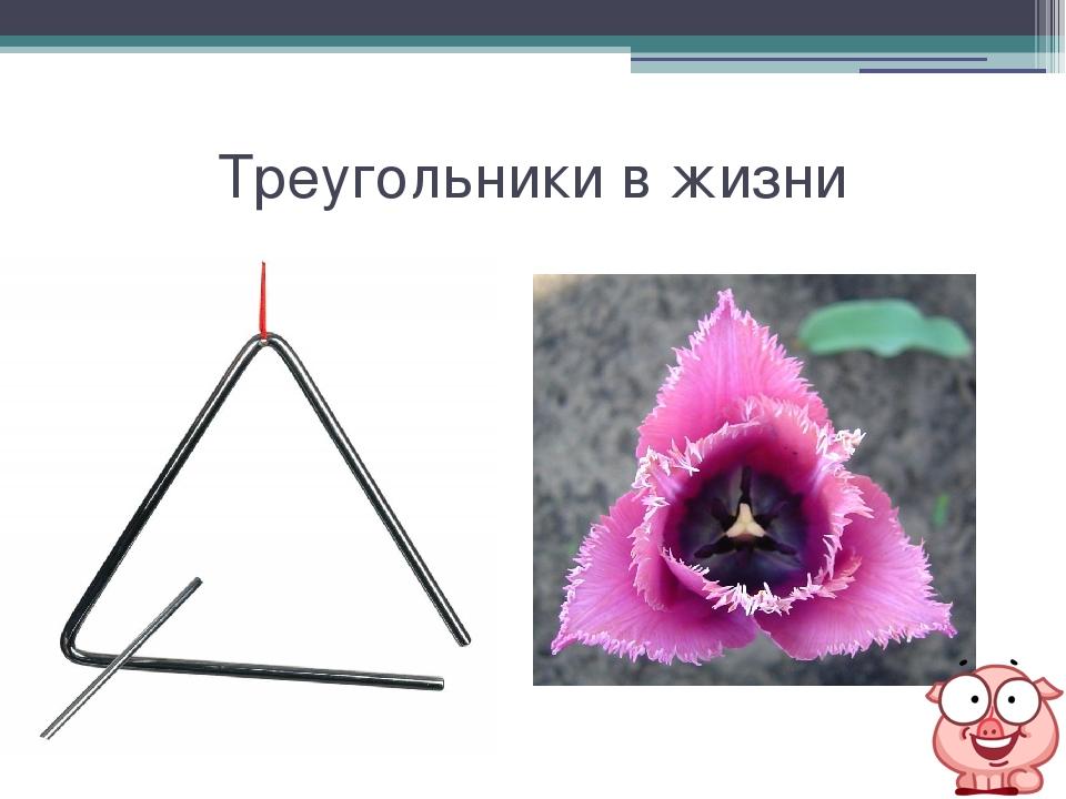 Треугольники в жизни