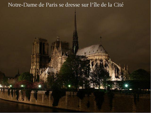 Notre-Dame de Paris se dresse sur l'île de la Cité