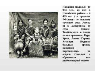 Нанайцы (гольды) (10 993 чел., из них в Нанайском районе – 4 469 чел ) в пред