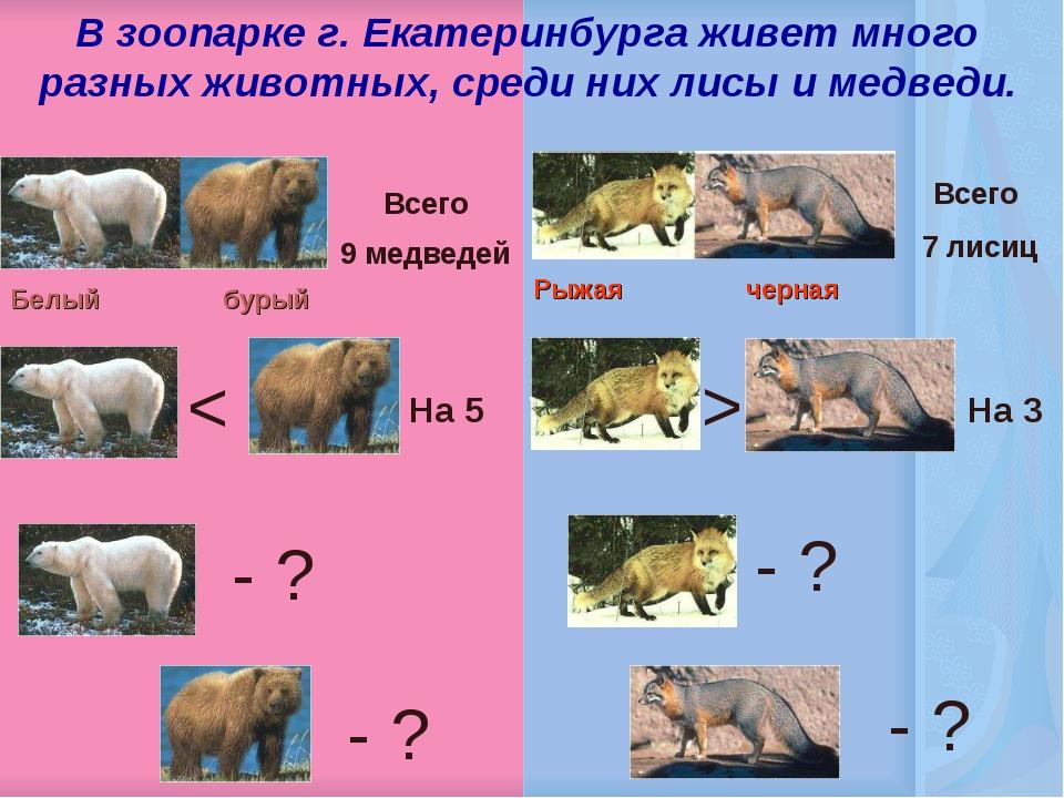 В зоопарке г. Екатеринбурга живет много разных животных, среди них лисы и ме...