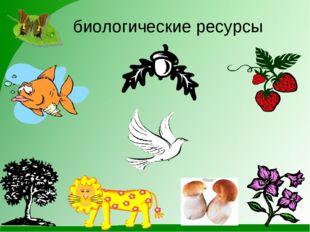 биологические ресурсы
