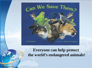 Everyone can help protect the world's endangered animals!