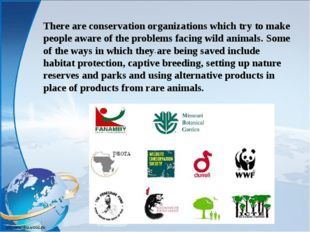 . There are conservation organizations which try to make people aware of the