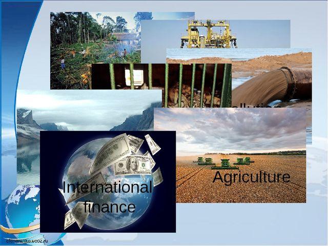 Habitat destruction Fishing industry Pollution Wildlife trade Agriculture Int...