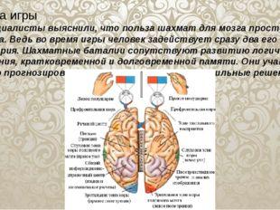 Польза игры Специалисты выяснили, что польза шахмат для мозга просто огромна.
