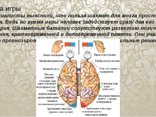 Польза игры Специалисты выяснили, что польза шахмат для мозга просто огромна....