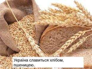 Україна славиться хлібом, пшеницею.