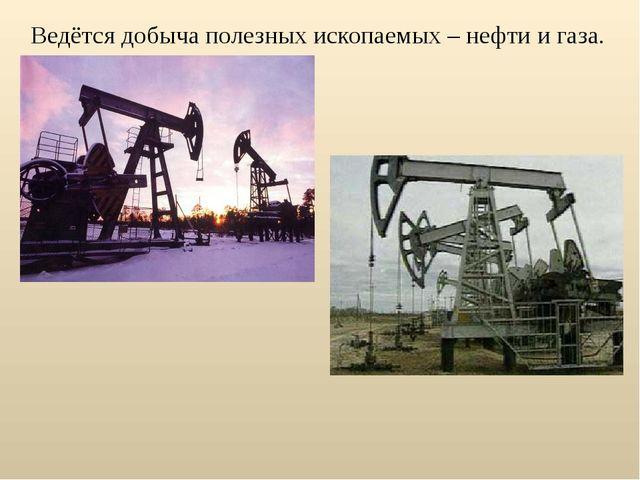 Ведётся добыча полезных ископаемых – нефти и газа.