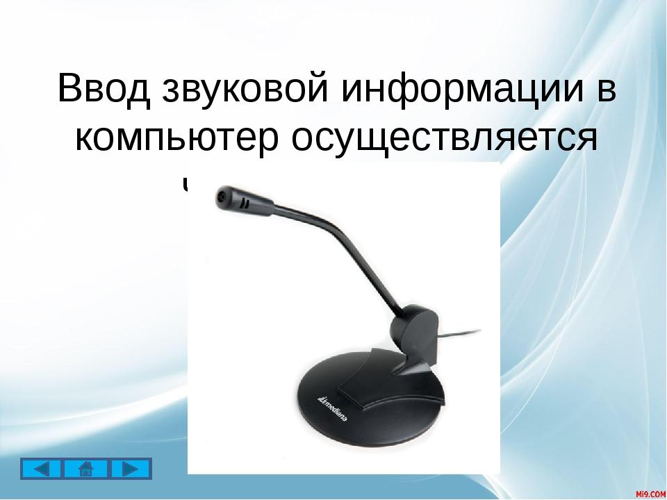 Для вывода звуковой информации используются акустические колонки или наушники.